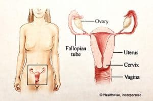 Abdominal Hysterectomy: What to Expect at Home